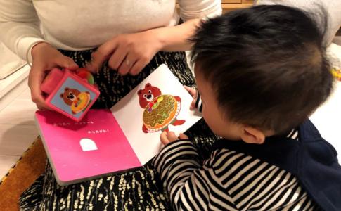 絵本と玩具